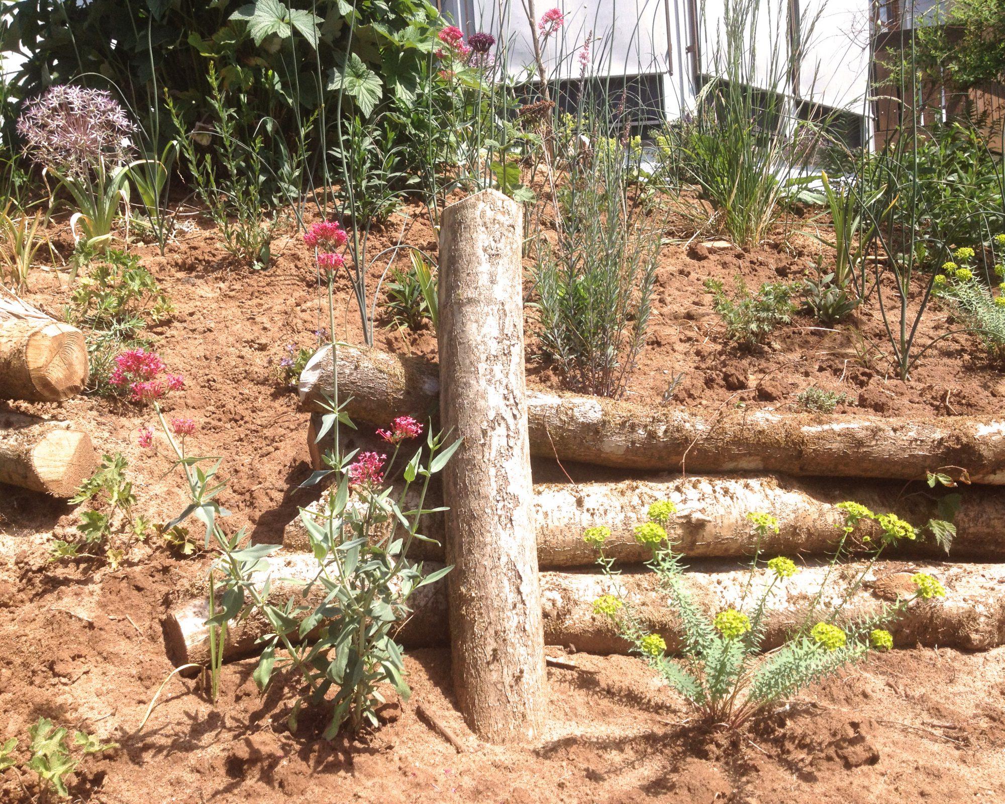 Holzverbauung und Bepflanzung